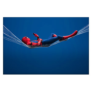 Spider-man. Размер: 30 х 20 см